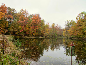Photo: Fall colors reflected in a pond at Carriage Hill Metropark in Dayton, Ohio.