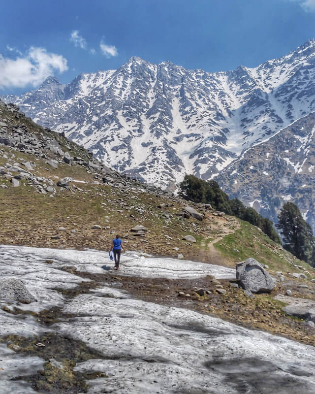 walking+on+snow+near+snowline+triund+dhauldhar++himachal+pradesh