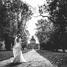 Wedding photographer Olga Medvedeva (olgamedvedeva). Photo of 21.06.2016
