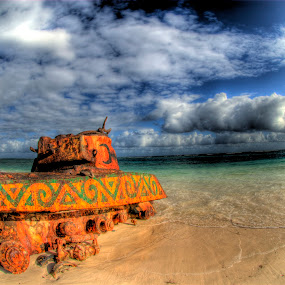 Old Tank by John Krivec - Artistic Objects Other Objects ( old tank flamenco beach culebra puerto rico )