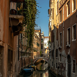 Canal with a view by Hariharan Venkatakrishnan - City,  Street & Park  Historic Districts