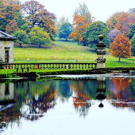 Reflecting autumn by Kathleen Brady - City,  Street & Park  Vistas