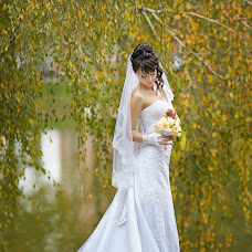Wedding photographer Olga Dvornik (LuchikOlga). Photo of 22.02.2014