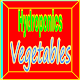 Hydroponics Vegetables icon