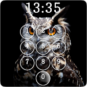 Owl Lock Screen & Wallpaper