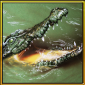 Wild Hungry Crocodile 3D