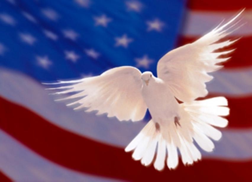 https://drkaytrotter.files.wordpress.com/2011/09/dove-flag.jpg