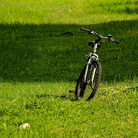 Bicycle by Hasanul Islam - Transportation Bicycles ( grass, green, byc, photography, hasanul islam photography, singapore, bicycle, fujifilm x, 0hasanul0, nature, hasanul islam, fujifilm, outdoor, fujifilm x-series, my style )