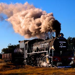 Steam train no 1 by Trippie Visser - Transportation Trains ( sky, grass, locomotive, train, steam )