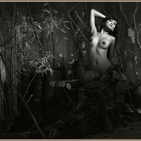 by Mister Photofiles - Nudes & Boudoir Artistic Nude