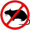 Anti Mouse Repeller icon
