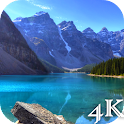 4K Live Wallpapers icon