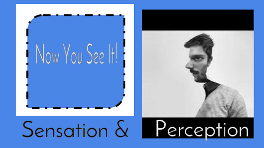 sensation & percpetion  hyperdoc