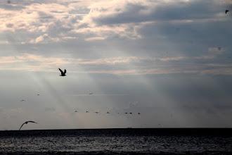 Photo: rayos de sal