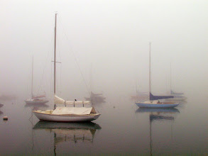 Photo: Out of the Fog