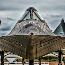 SR 71 Blackbird by Joe Saladino - Transportation Airplanes ( sr 71, surpesonic, airplane, aircraft )