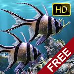 The real aquarium HD - Live Wallpaper 2.28 (AdFree)