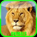 Animal Sounds Zoo icon