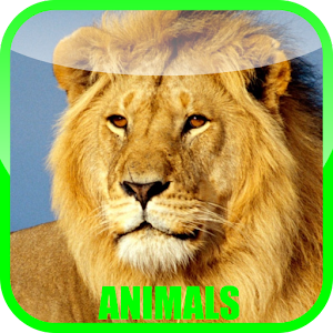 Animal Sounds Zoo for PC and MAC