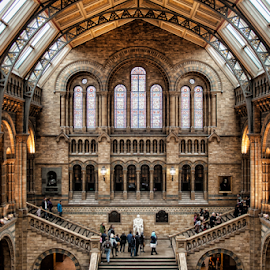 London Natural History Museum by Gianluca Presto - Buildings & Architecture Public & Historical ( stairs, ancient, arch, london, arches, natural museum, architectural detail, architecture, museum, historic,  )