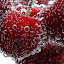 Cherries by Besnik Hamiti - Food & Drink Fruits & Vegetables ( cherry, cherries,  )