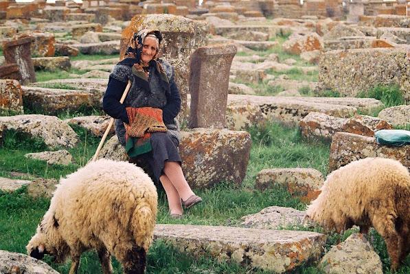 Solitudine pastorale di paolo-spagg