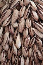 Photo: Riešutų kalnai.  The mountains of nuts.