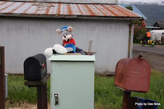 Photo: (Year 2) Day 345 - On Guard at Someones Letter Box on Puget Island
