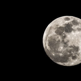 Moon by Iqbal Ahmed - Uncategorized All Uncategorized ( moon, sky, full moon, astrophotography, ahmed, iqbal )