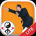 Shaolin Kung Fu LITE icon