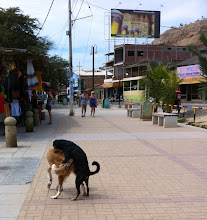 Photo: On the streets in Máncora, Peru.  June 2012.