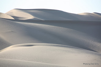 Photo: (Year 3) Day 37 - Sand Dunes at Glamis #2