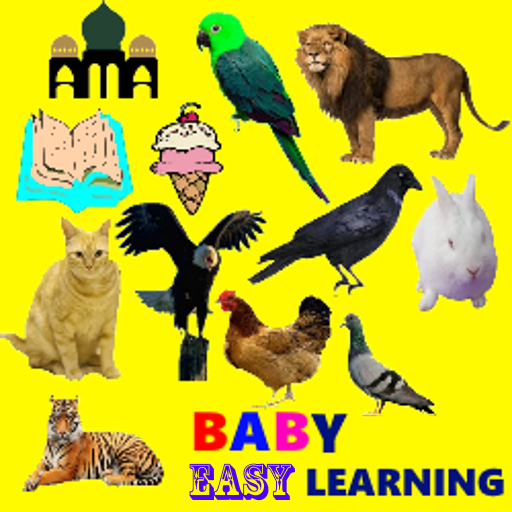 Baby Easy Learning
