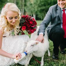 Wedding photographer Anastasiya Mikhaylina (mikhaylina). Photo of 23.01.2016