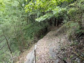 左は急斜面(トラロープや簡易柵)