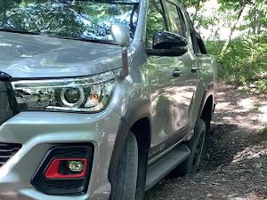 ハイラックス 4WD ピックアップのカスタム事例画像 ダイテルさんの2020年08月25日17:12の投稿