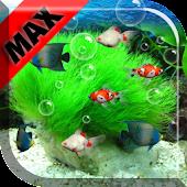 Aquarium Max Live Wallpaper