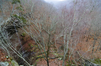 Photo: Slender waterfall coming off of bluff above Whitaker Creek