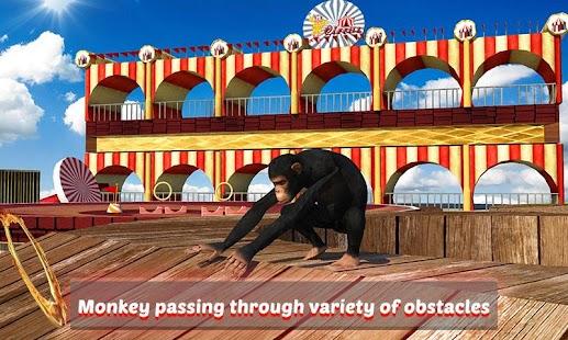 Goat-Monkey-Stunts 1
