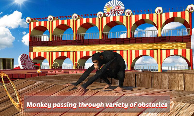 Goat-Monkey-Stunts 19
