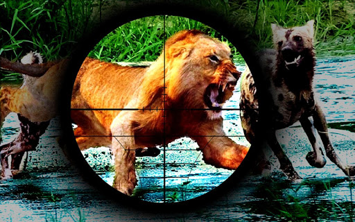 사자 사냥 - Lion Hunting