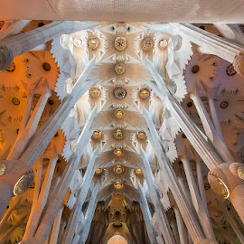 La Sagrada Familia by Peter Driessel - Buildings & Architecture Places of Worship