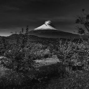 Smoking volcano in the morning by Cristobal Garciaferro Rubio - Black & White Landscapes ( volcano, popo, mexico, puebla, popocatepetl, snowy volcano, smoke )