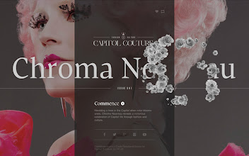 Photo: Site of the Day 19 June 2013 http://www.awwwards.com/web-design-awards/capitol-couture-1