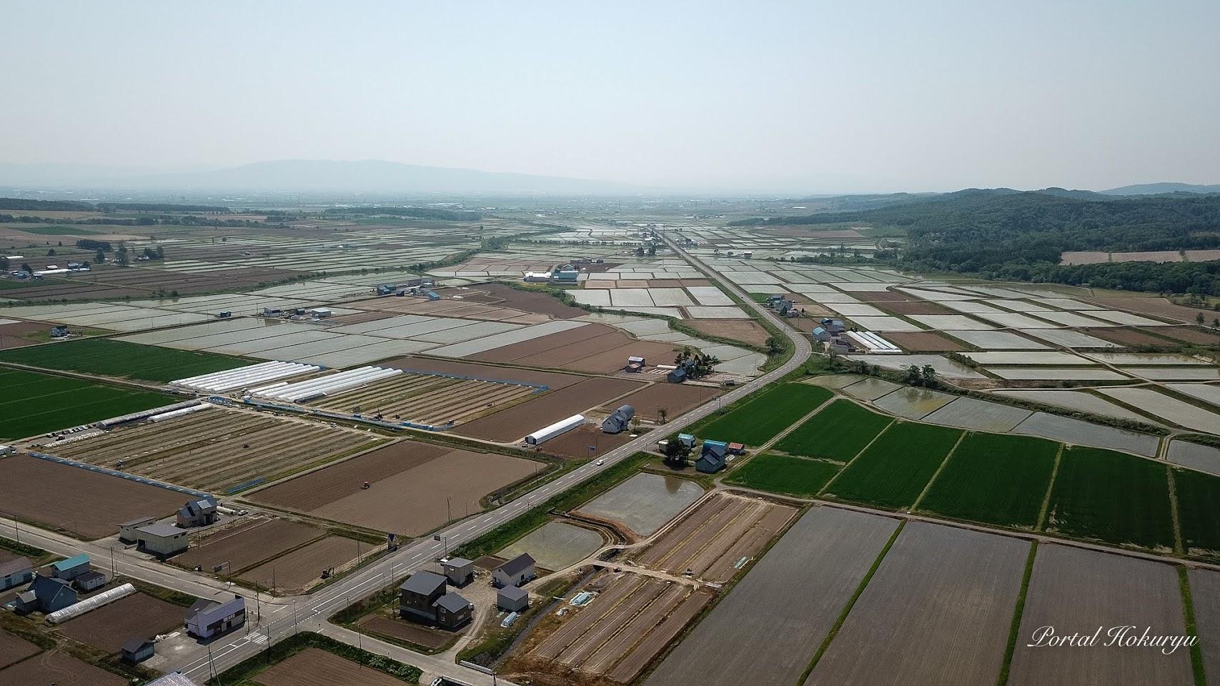 美葉牛地区の水田と畑の共存風景