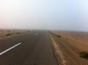 Photo: Desert? Humidity!