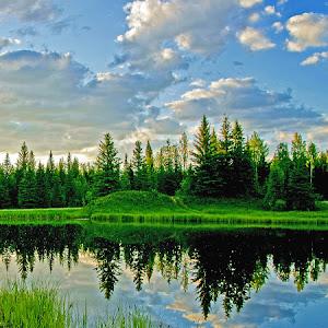 Landscape-Reflection.jpg