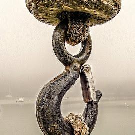 Hook by Richard Michael Lingo - Artistic Objects Industrial Objects ( maine, hook, industrial object, rope, artistic object )