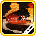 Jigsaw Puzzles: Snakes icon