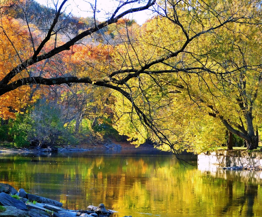 Fall Along The Fox by Beth Bowman - Landscapes Waterscapes (  )